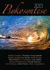 Psykosyntese2015-100